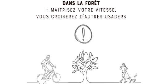 Nos conseils pour vos balades en Fatbike dans la forêt